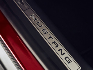 fordmustangmachedetails22.jpg